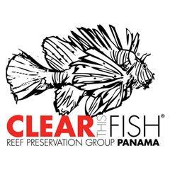 Hunting Lionfish in Panama