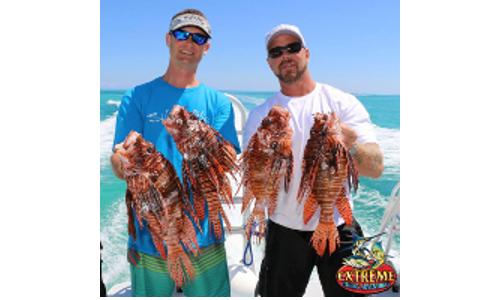 Largest Lionfish Caught