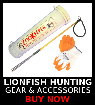 Lionfish Hunting Spears, Gear, Accessories and Equipment