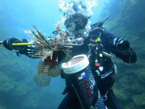How to safely hunt lionfish