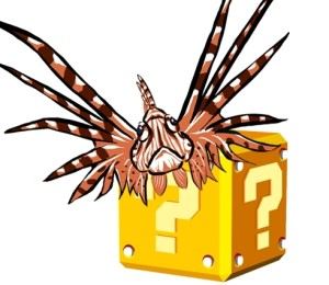 Questions and Myths About Lionfish