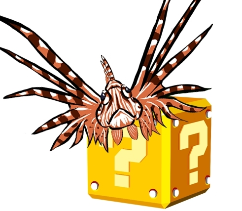 Lionfish Facts: The 10 Most Common Lionfish Myths Busted!