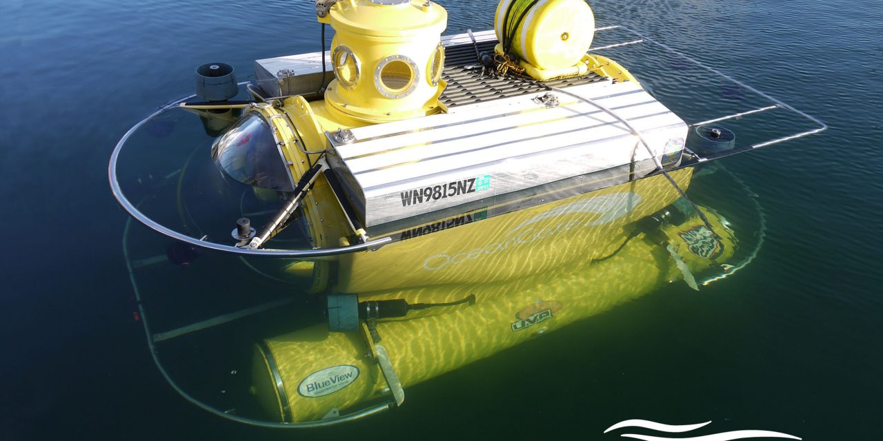 Using a Manned Submarine to Hunt Invasive Lionfish