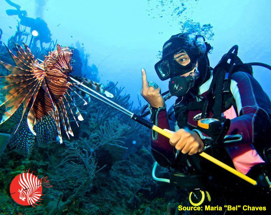 Giving the Finger to a Dead Lionfish