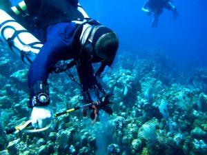 Lionfish Hunting Beyond Recreational Recreational Scuba Diving Depths