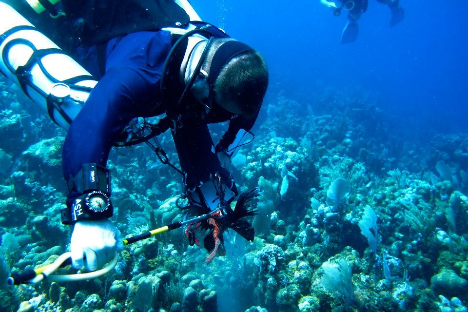 Lionfish Hunting Past Recreational Depths – What's it Like Down There?