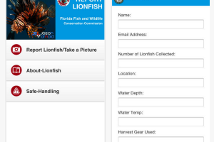 Florida FWCC Develops Free Lionfish Reporting App for iOS and Android Devices