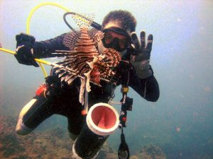 best tips for lionfish hunting