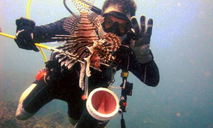 9 Best tips for hunting lionfish