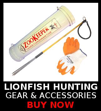 Buy lionfish hunting gear